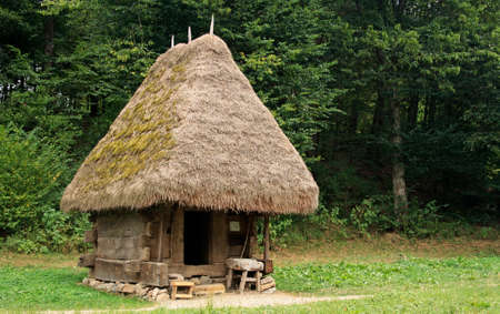 Old, traditional house