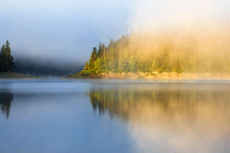 Landscape with mountain forest. fog and lake in summer morning Stock Photo