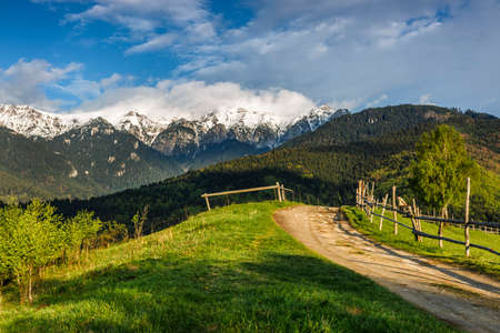 Spring alpine landscape with green fields and high snowy mountains,Bran,Transylvania Stock Photo