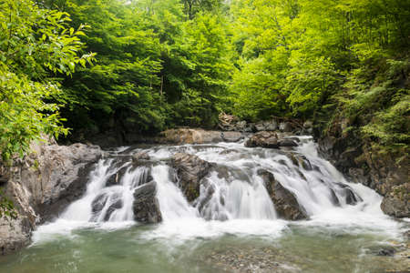 Mountain forest stream with fast flowing water and rocks, long exposure. Standard-Bild