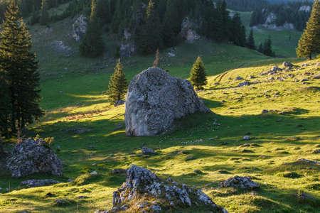 Landscape in morning light. Location place Carpathian mountains, Romania. Summer scene, fresh seasonal background. Standard-Bild