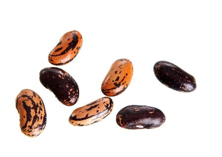 homogeneous: Some beans isolated on a white background