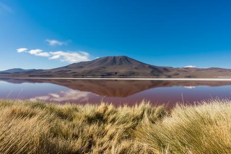 Laguna Roja, salt lake with reflection of the mountain, Eduardo Avaroa Andean Fauna National Reserve, Bolivia. Imagens