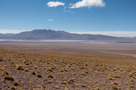 Beautiful landscape of a lagune in the altiplano in bolivia