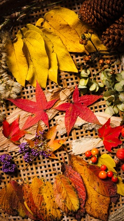Autumn arrangement, fall color-1, many elements of current season.