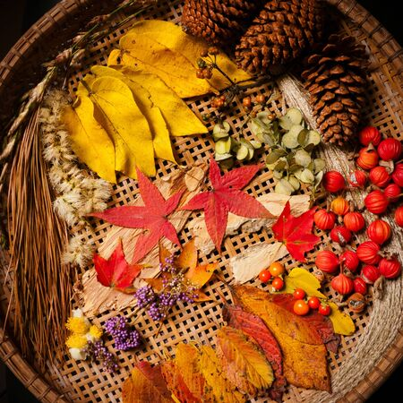Autumn arrangement, fall colors-2 Stock Photo