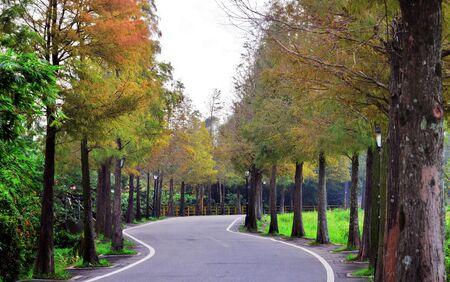Autumn scene of country road. Stock Photo