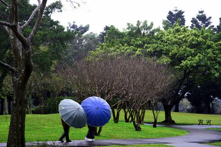 Health concept, park scene of rainy day. Stock Photo