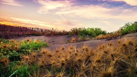 Sand dunes and ocean at sunset, Taipei, Taiwan