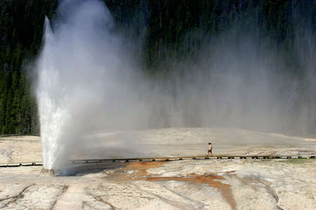 yellowstone: a woman walking towards the beehive geyser in yellowstone national park, wyoming. Stock Photo