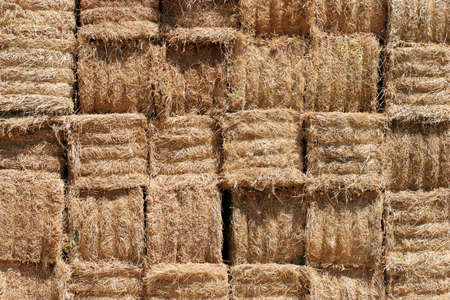 close up of stacked bales of hay photo