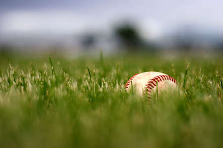 tall grass: used baseball lost in the grass, after the game Stock Photo