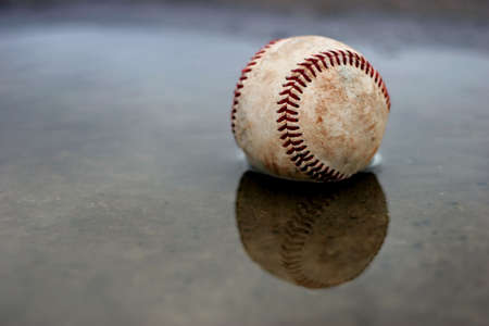 homerun: home run - a baseball in a puddle outside the park