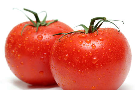 two tomatos with water droplets, macro over white with shallow depth of field photo