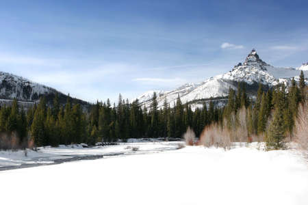 yellowstone: winter landscape with Pilot Peak in the background. Located in Wyoming, just outside of Yellowstone National Park.