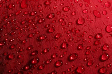 rose petal droplets - macro of water droplets on a red rose petal, shallow depth of field photo