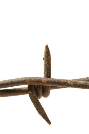 barbed wire macro isolated over white, limited depth of field Stock Photo - 296895