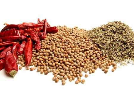 cilantro: hierbas y especias - secado de chile rojo pimiento, cilantro, y tomillo. closeup en blanco.