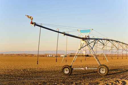 agriculture industry - modern automated irrigation sprinkler system in late sun, blue sky photo