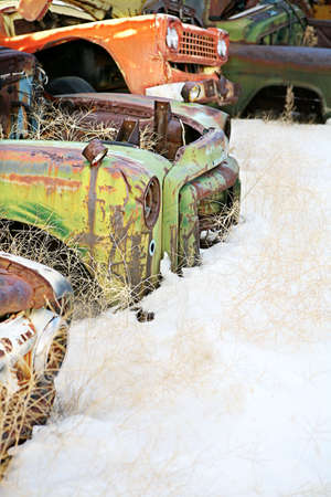 abandoned cars in the snow at a junkyard photo