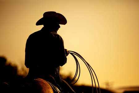 rodeo cowboy: cowboy with lasso silhouette at small-town rodeo. Note: added grain.