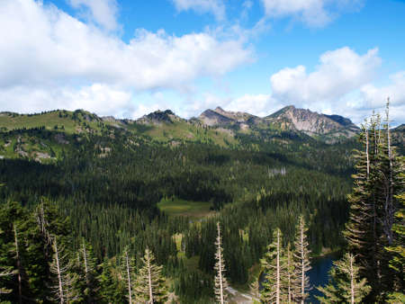Scenic views of Mount Rainier National Park in Washington State. 版權商用圖片
