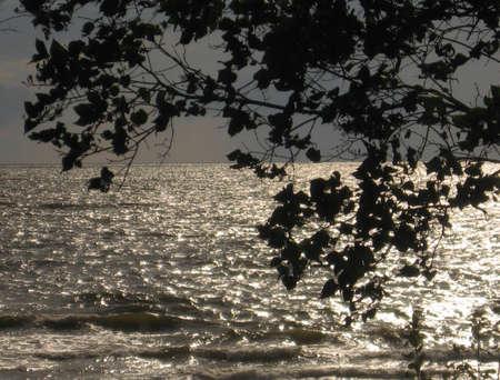 encrespado: se oyen mar