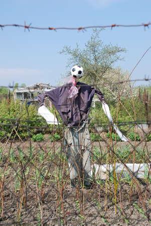 bugaboo: Scarecrow Stock Photo