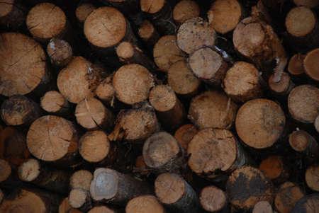 boles: firewoods Stock Photo