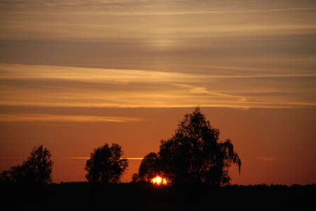 conceal: sunset