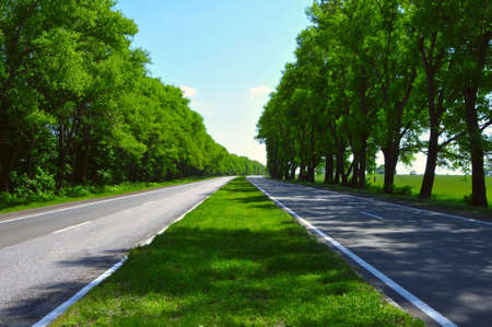 both sides: wide road with trees on both sides