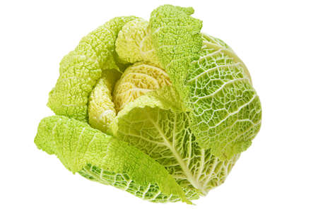 A Head of Savoy Cabbage on White Background photo
