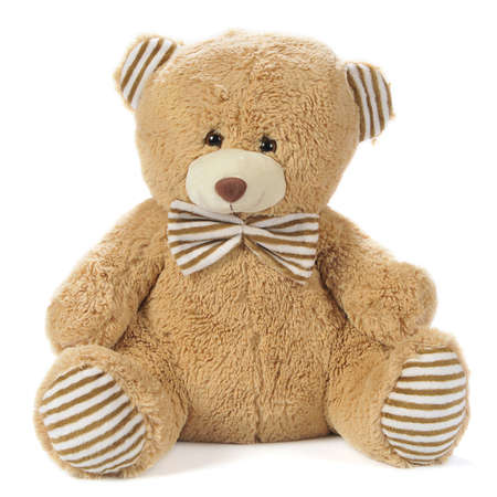 plush toy: Image of a stuffed bear isolated on white