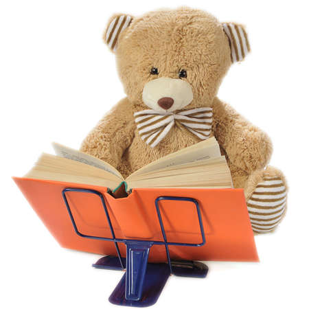 Image of a stuffed bear reading a book isolated on white photo
