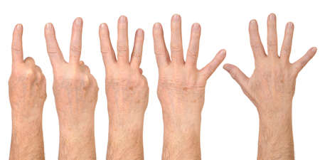 Male hands counting photo