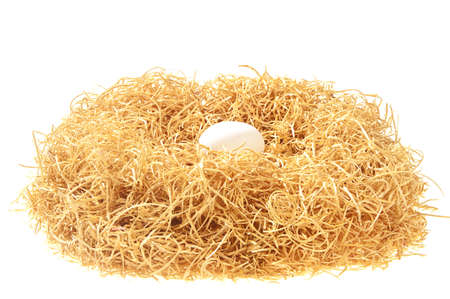 white egg in a nest isolated on white background