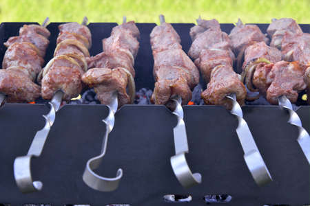 oal: Juicy pork threaded on skewers, roasted on coals on the grill