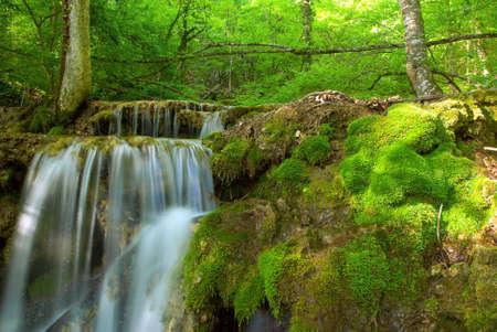 Waterfall stream Stock Photo - 5276368