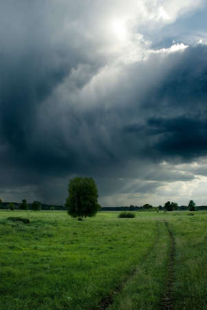 Landscape with a loneley tree, contry road and stormy clouds photo