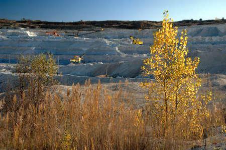 Opencast mine with view of yellow tree
