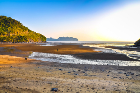 cat island: Coast of Cat Ba Island during low tide.