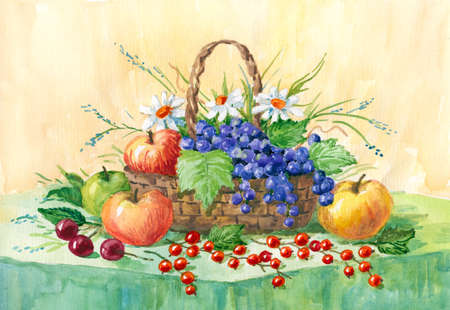 Still life with apples, grapes and red currants. watercolor painting. Illustration