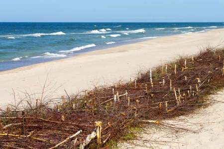 scarp: fascine cage made of tree branches to keep the sand on the beach. Protective structures