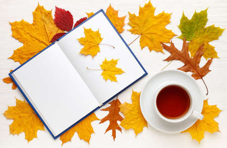 Notebook with clean sheets and a Cup of tea on the background of bright autumn leaves. Autumn mood concept. Flat lay, top view, copy space