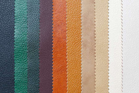 Samples of natural, textured, multi-colored leather. Top view