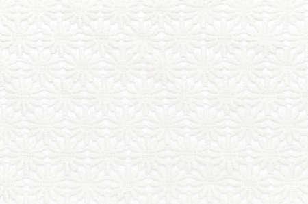 Beautiful white lace on white background.