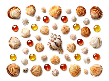 Pattern made of shells and yellow and orange glass pebbles isolated on white background. Flat lay, top view. The concept of summer holidays and travel