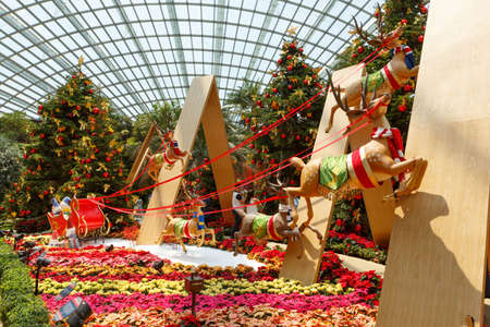 Singapore, Singapore-November 25, 2019: Gardens by the Bay, Flower Dome, beautiful Christmas decorations reindeers in a team and Christmas trees 報道画像