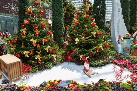 Singapore, Singapore-November 25, 2019: Gardens by the Bay, Flower Dome, beautiful Christmas decorations 報道画像