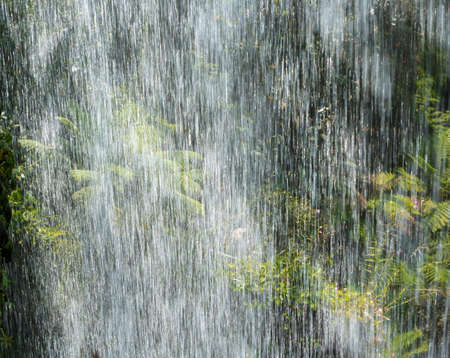 Heavy tropical rain, rainstorm in the jungle close-up, background image